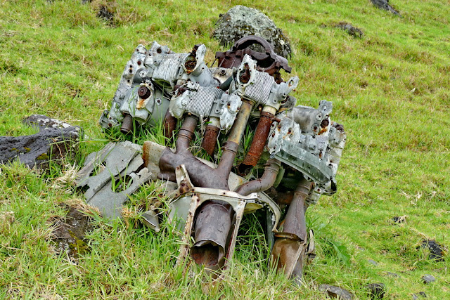 Flugzeugmotor Trümmer Absturz Tipps gegen Flugangst Lord Howe Island