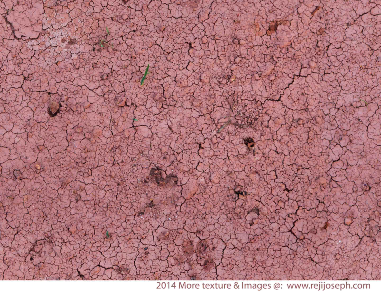 Parched Land texture 00003
