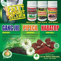 7 Obat Kencing Keluar Nanah Herbal Paling Ampuh
