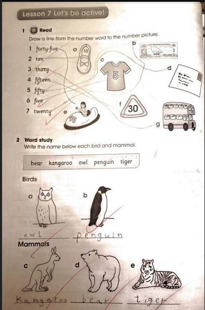 حل دروس من 7 إلى 12 من كتاب النشاط للصف الرابع