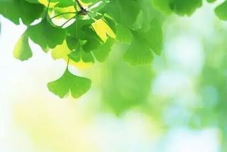 【原創】582 《薦讀.人生最高境界就一個字 - 給》 - 沧海一粟 - 滄海中的一粒粟子