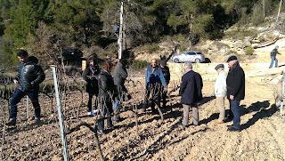 Visita a les vinyes Celler Matallonga Fulleda