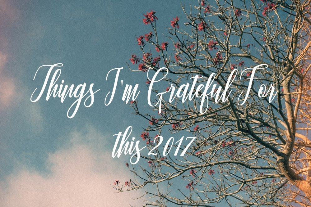 Things I'm Thankful for this year of 2017