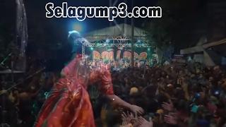 Download Lagu Spesial New Pallapa Terbaru 2019 Full Mp3 Paling Enak
