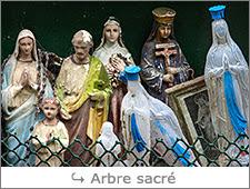 http://www.laurentbessol-photographies.fr/p/arbre-sacre.html