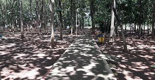 Hutan Rajawali Batang