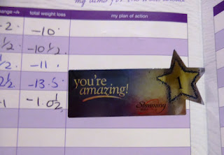 One stone sticker Slimming World