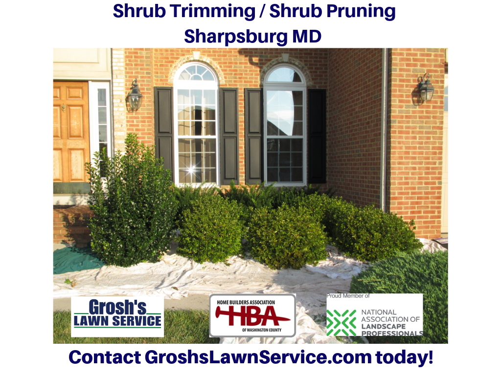 Groshs Lawn Service: Shrub Trimming Sharpsburg MD Washington