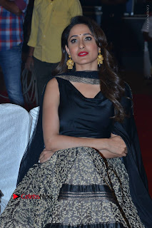 Om Namo Venkatesaya Telugu Movie Audio Launch Event Stills  0070.JPG