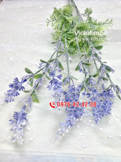 Phu kien hoa pha le o Ngoc Khanh