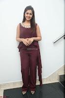 Nikki Galrani in a Brown Shining Sleeveless Gown at Nakshatram music launch ~  Exclusive 102.JPG