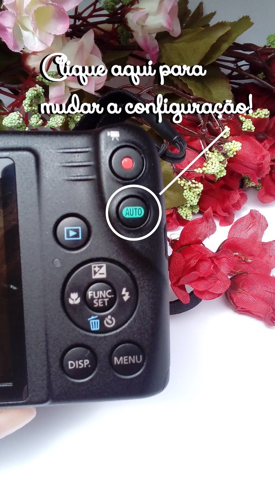 Como configurar a Canon Powershot sx400is