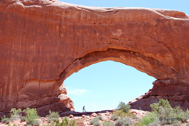 The Windows @ Arches