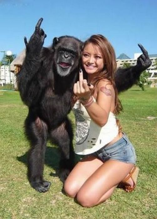 Monkey sure not angry but humorous
