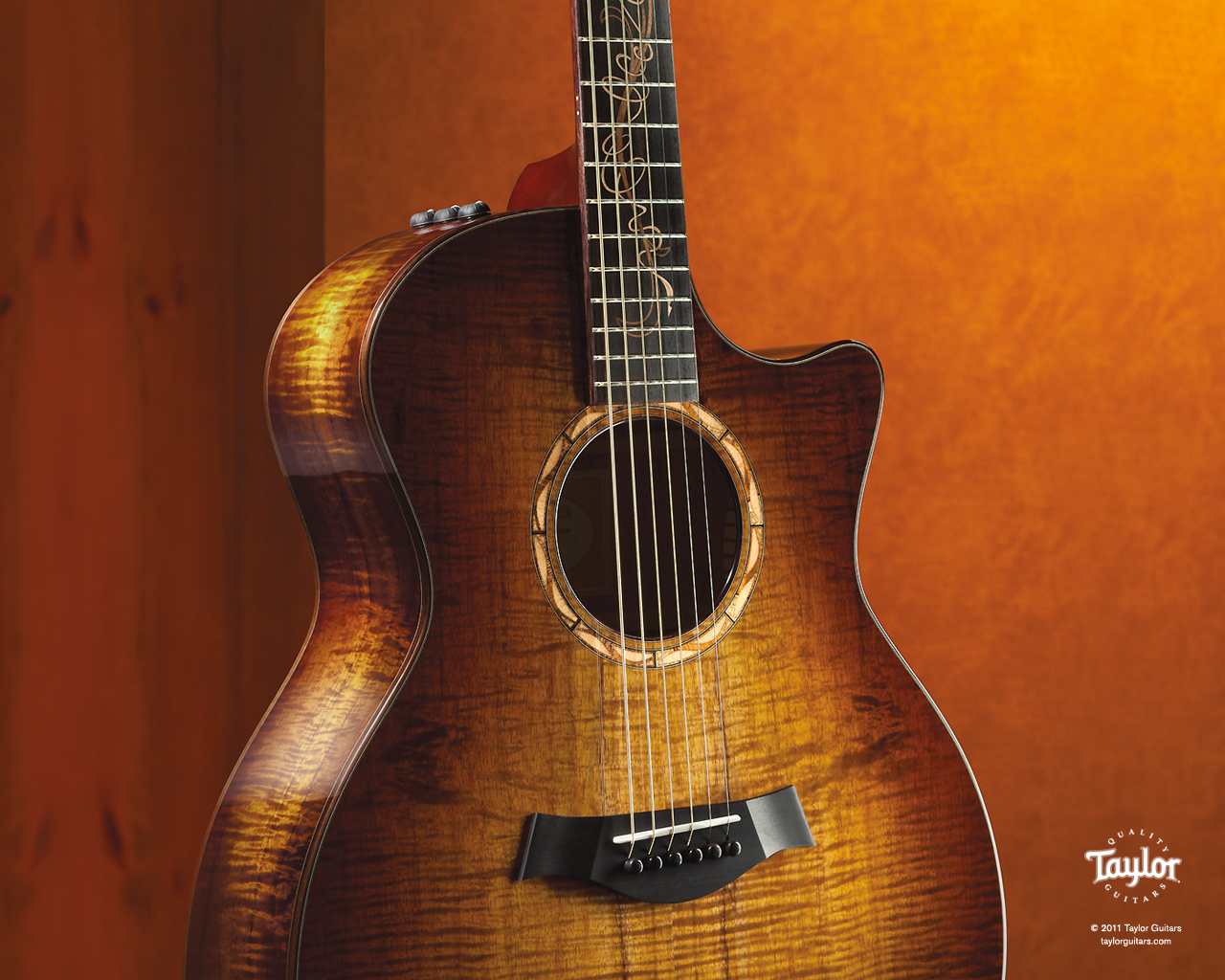 taylor guitars wallpapers - photo #6