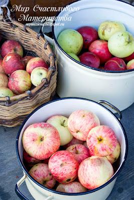 собираем яблоки