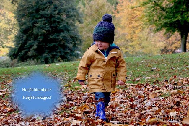 Vragen over de herfst