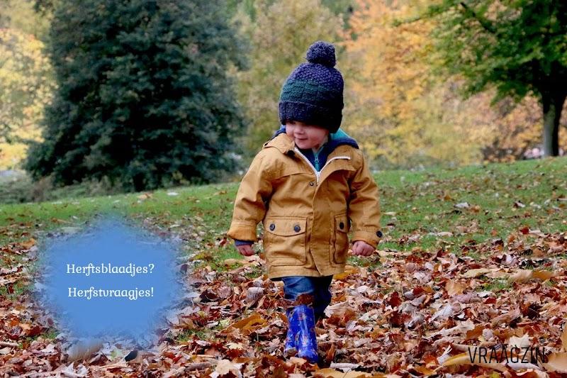 86 denkvragen over de herfst (denksleutels)