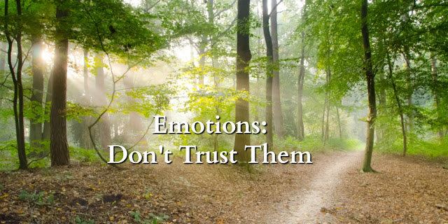 """Dealing with emotions that seem """"logical"""" but aren't Biblical"""