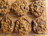 Ginger Snap Oat Cookies