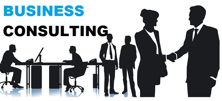 small business consultant Consulting For Local business