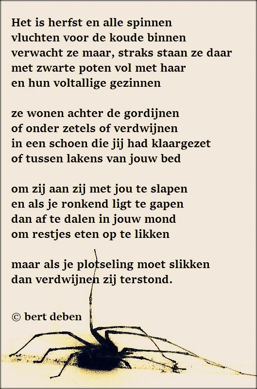 Favoriete Top Huwelijk Gedichten Toon Hermans NF62 | Belbin.Info GL91