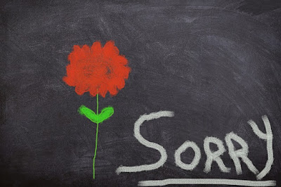 i am sorry quotes,cute sorry images