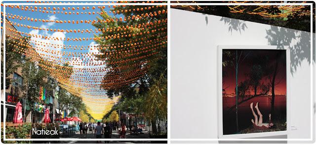 Rue Saint Catherine et ses guirlandes arc en ciel et son exposition Blanc