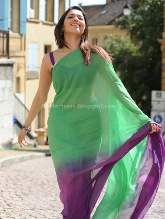 Thamanna latest saree images