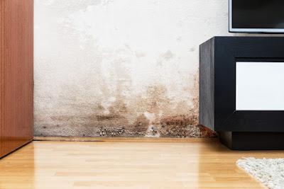 le blog de bati traitement conseils et fiches pratiques pour l 39 entretien de la maison et b timent. Black Bedroom Furniture Sets. Home Design Ideas