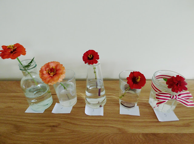 Flower Food Experiment Home Schooling