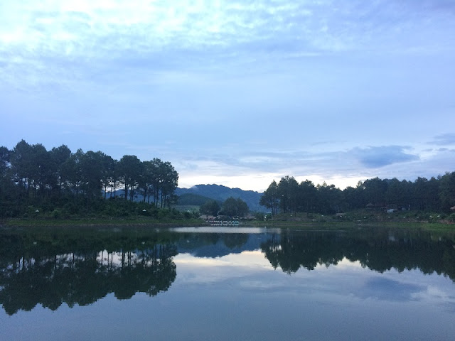 Pine Forest Ang Village - Picture Romantic Landscape of Moc Chau plateau