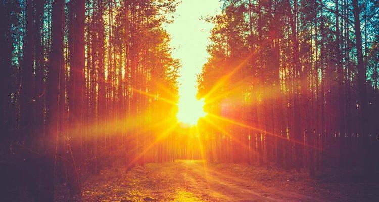Δημιουργήθηκε υλικό που απορροφά το 99,9% του φωτός