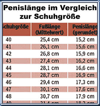 Statistik Schuhgröße Penislänge