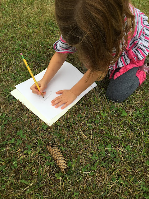 kindergarten child observing and sketching during fall nature walk