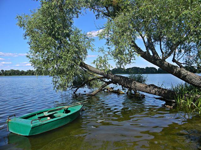 łódź, wierzba, woda, wypoczynek