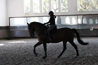 Portugal, Riitta Reissaa, Horsexplore, Xi, ratsastusmatka, Riitta Kosonen
