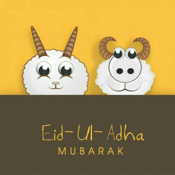 Eid al adha mubarak goat and cattle