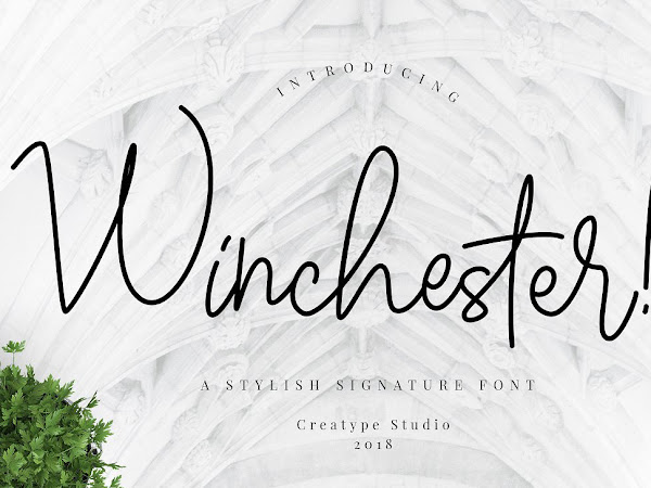 Download 10 Free Premium Signature Fonts