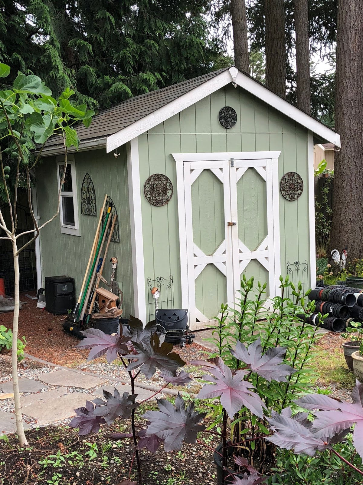 Bonney Lassie: My New Green House