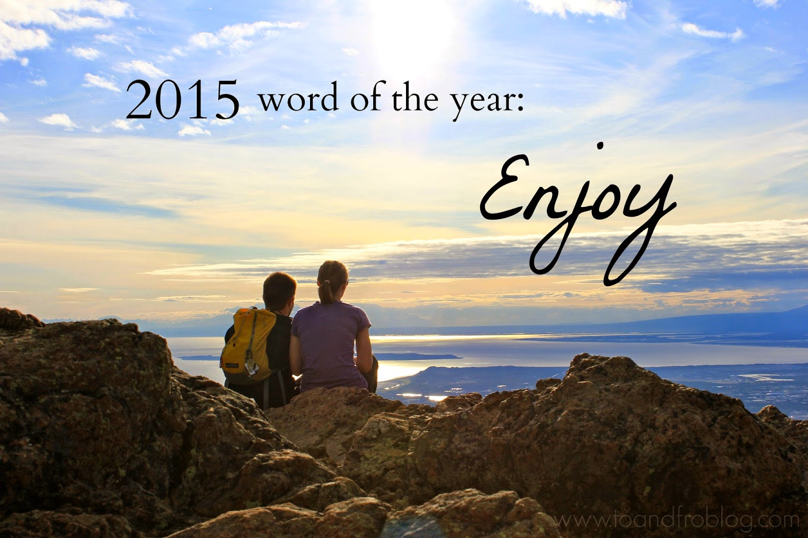 2015 word of the year: enjoy