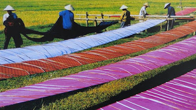 Van Phuc Silk Village 1