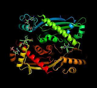 http://biochimicaenzo.blogspot.it/2017/03/sezione-di-biochimica-torna-alla-home.html
