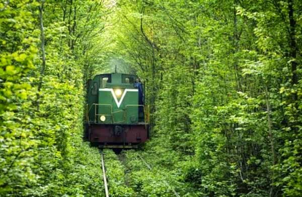 Top List of Best 9 Most Amazing Railway Track Of The World