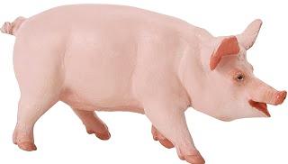 Imagen de cerdo de perfil - Animal doméstico