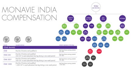 monavie india business plan ppt