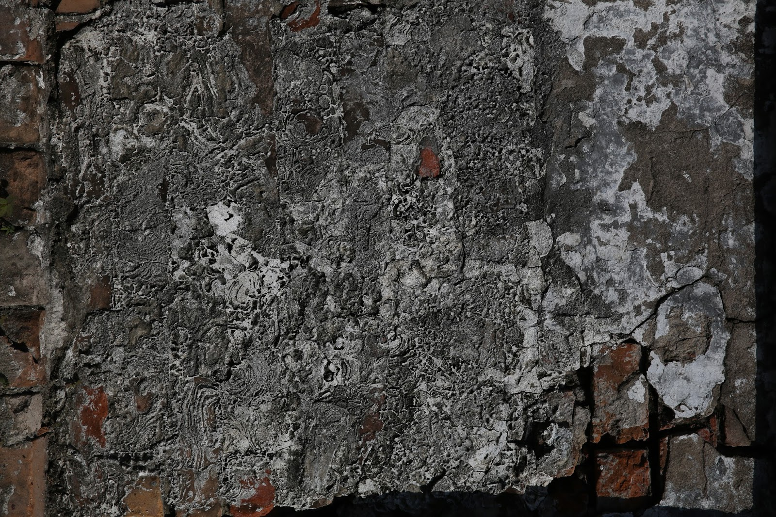 Eroded Plaster on Brick 4304