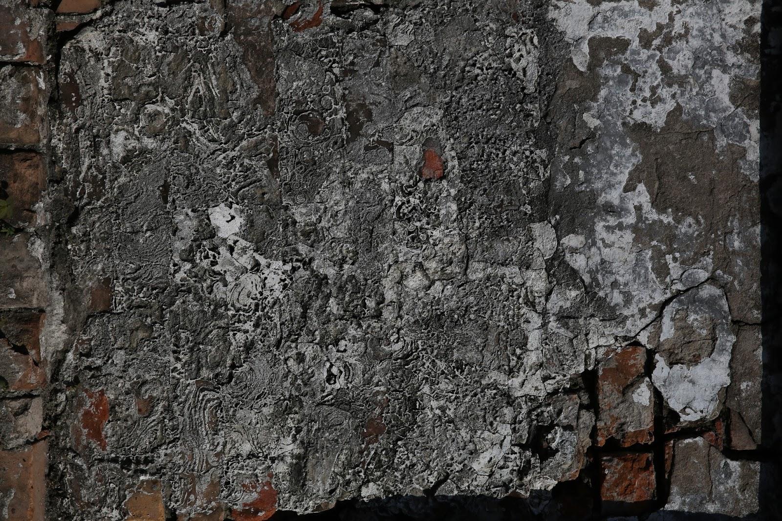 Eroded Plaster on Brick 4304