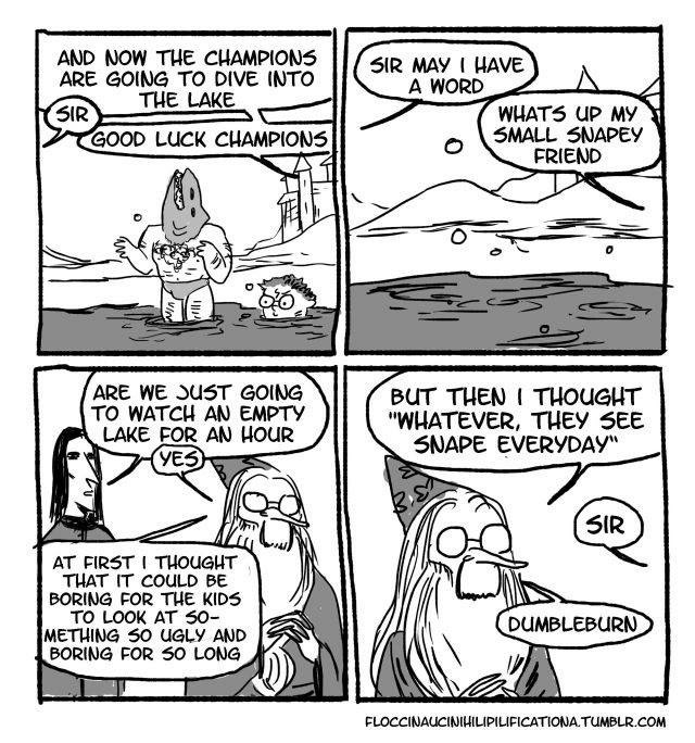 A funny comic about the second trial of the Twiwizard Cup