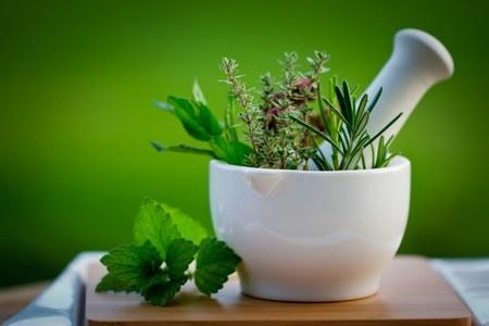 Mengatasi Difteri dan Disentri dengan Herbal